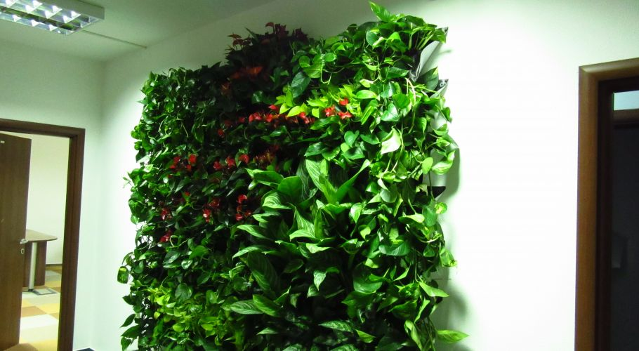 Green Walls @ Uipath