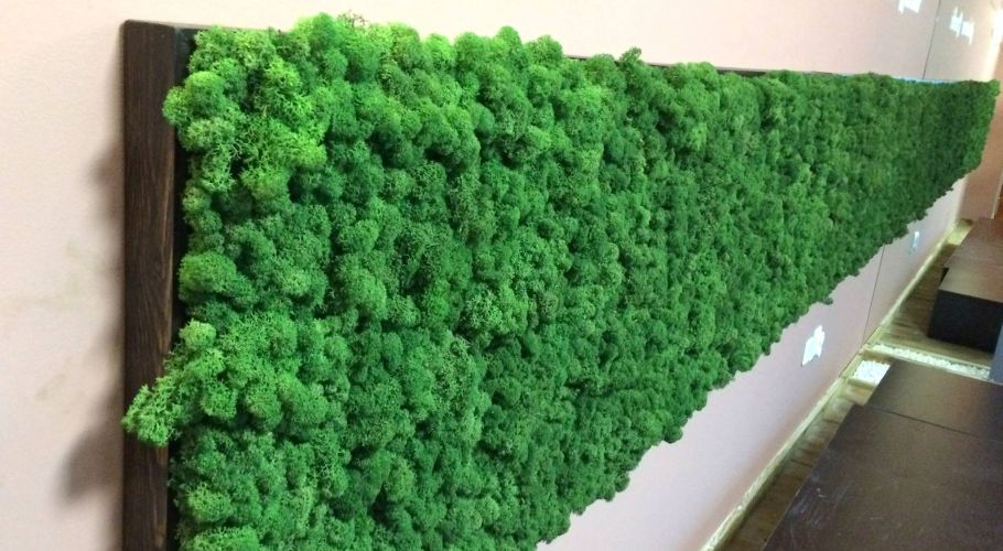 Green Walls @ Opera Center