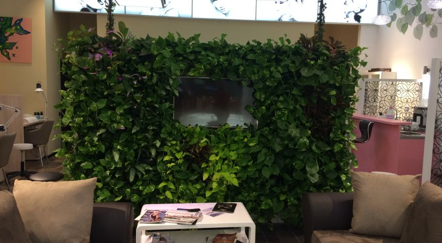 Green Walls @ Baneasa Shopping City