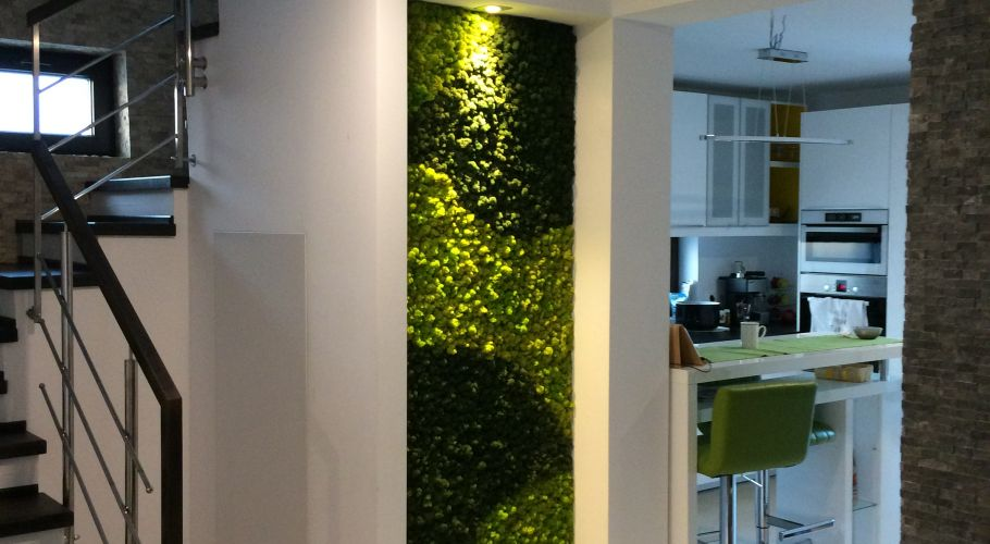 Green Walls @ Fundeni