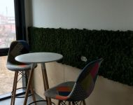 Green Walls @ Hilti Romania