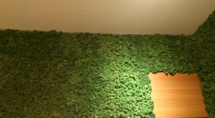 Green Walls @ Premium Wellness Institute