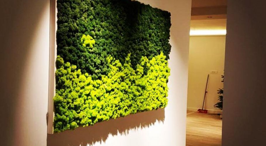 Green Walls @ Apartament Rezidential