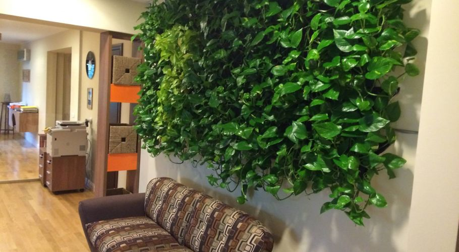 Green Walls @ Seven Film Production
