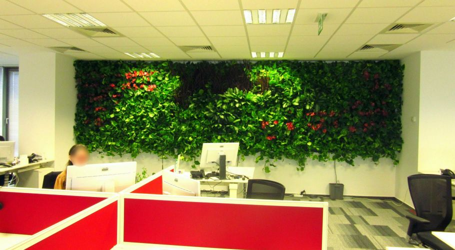 Green Walls @ Allianz