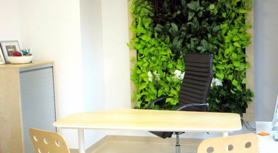 Green Walls @ Clinica Ares